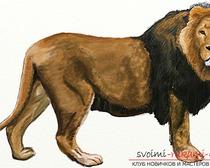 Рисование в несколько этапов льва