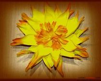 Мастер-класс: цветы из фоамирана