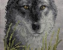 Вышивка крестом: Волк