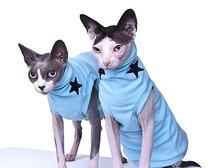 Шьем одежду для кошек