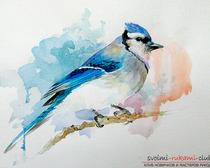 Рисование акварелью птички