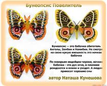 Плетение из бисера: Бабочка Бунеопсис Повелитель