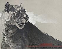 Мастер-класс рисунок пумы, выполненный углем