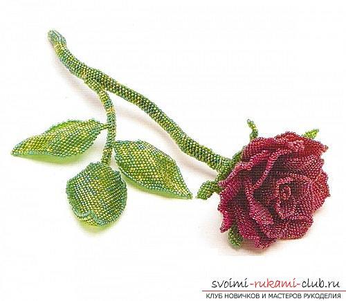 Бесплатные схемы плетения розы из бисера, мастер классы с фото и описанием работы.. Фото №2