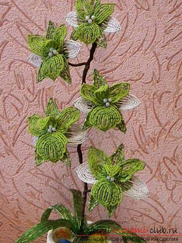 Как сплести орхидею из бисера, подробный и пошаговый мастер класс французской осевой техники плетения цветов из бисера с большим количеством фото и описанием работы. Фото №13