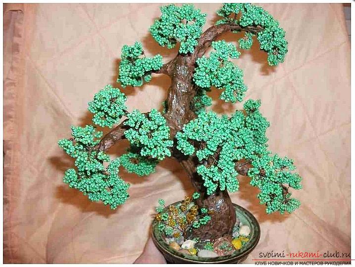 Как сделать дерево бонсай из бисера своими руками, несколько мастер классов создания бонсай в разных цветовых решениях, пошаговые фото и описание. Фото №1