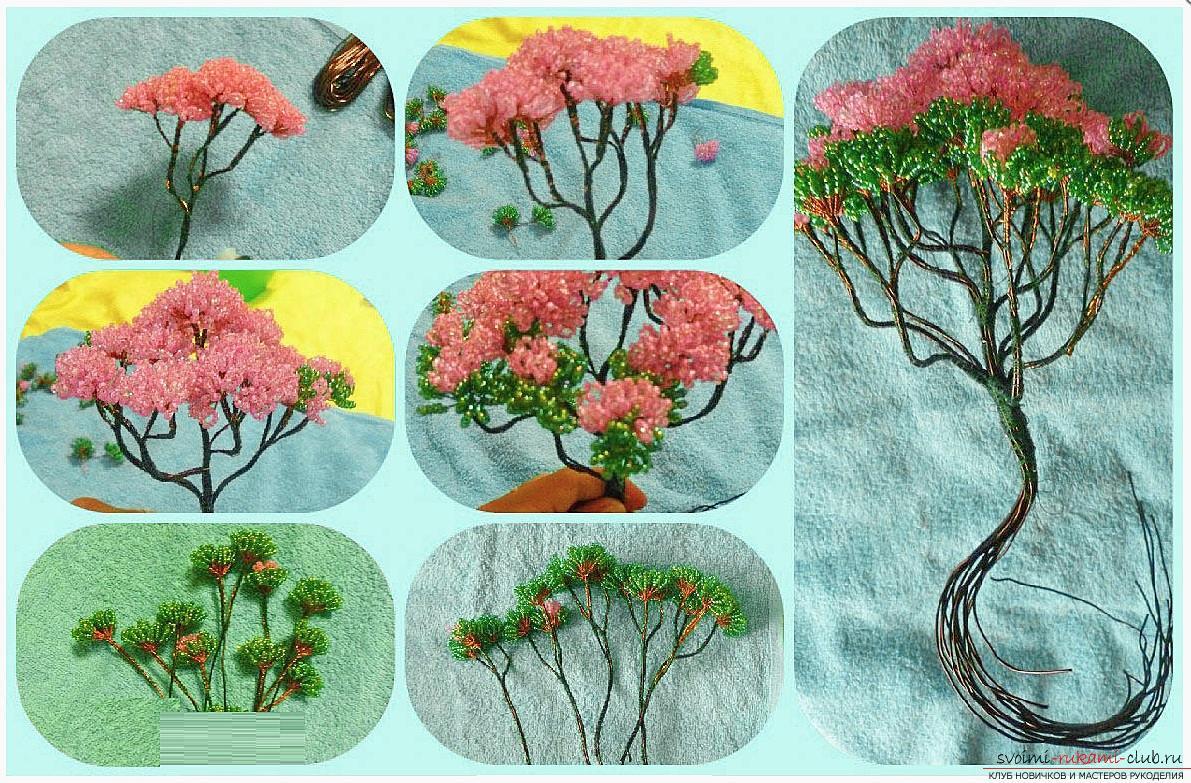Как сделать дерево бонсай из бисера своими руками, несколько мастер классов создания бонсай в разных цветовых решениях, пошаговые фото и описание. Фото №15