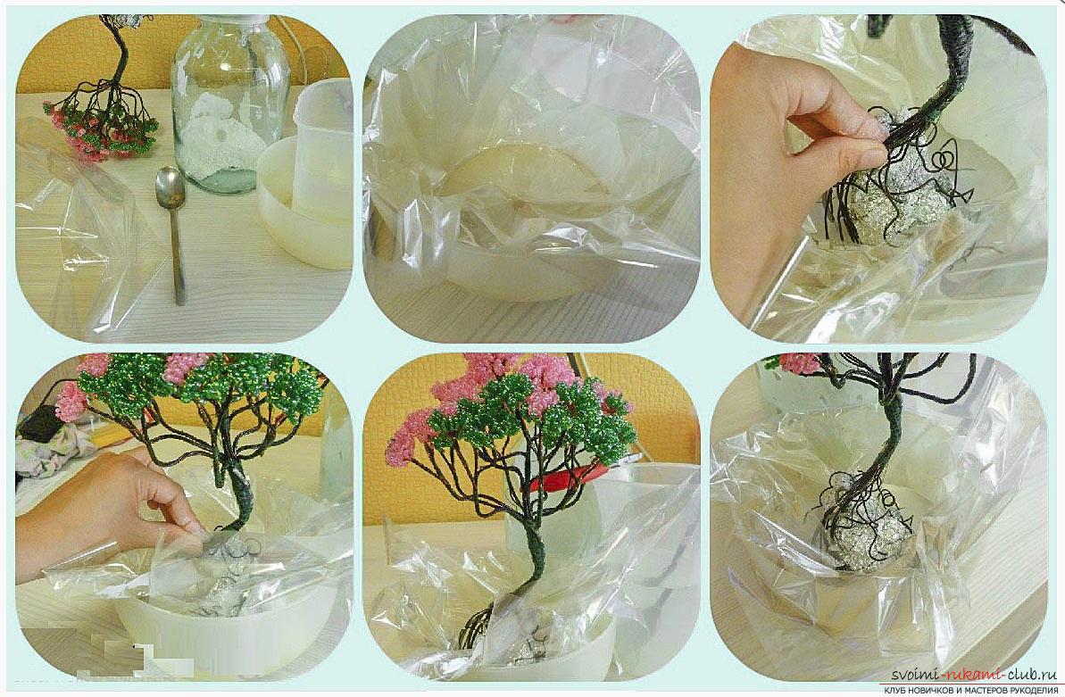 Как сделать дерево бонсай из бисера своими руками, несколько мастер классов создания бонсай в разных цветовых решениях, пошаговые фото и описание. Фото №17