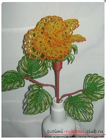 Как сплести розу из бисера. пошаговые фото и подробное описание плетения цветка и листьев розы в различных техниках. Фото №16