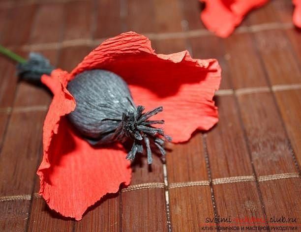 Как сделать букет полевых цветов в свит дизайне, пошаговые фото создания мака, ромашки, цветка подсолнечника, василька и крокуса. Фото №9