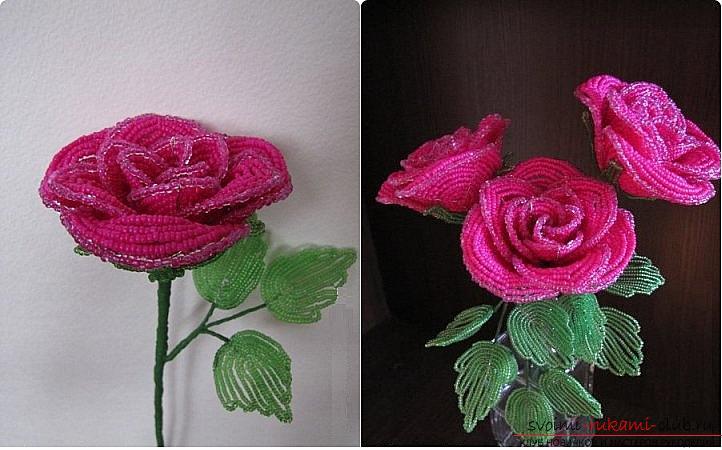 Как сплести розу из бисера. пошаговые фото и подробное описание плетения цветка и листьев розы в различных техниках. Фото №1