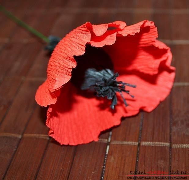 Как сделать букет полевых цветов в свит дизайне, пошаговые фото создания мака, ромашки, цветка подсолнечника, василька и крокуса. Фото №10