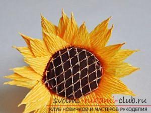 Как сделать букет полевых цветов в свит дизайне, пошаговые фото создания мака, ромашки, цветка подсолнечника, василька и крокуса. Фото №24