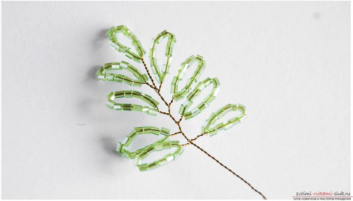 Как сплести глицинию из бисера, пошаговые фото и описание плетения японской и китайской глицинии в петельной технике, советы по декору поделки. Фото №13