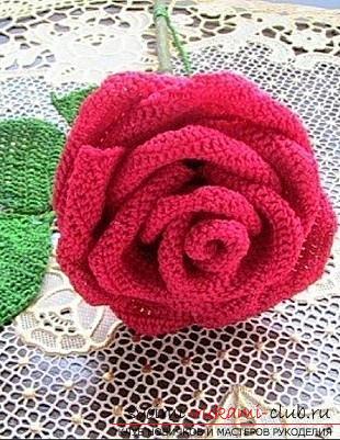 Схемы и подробное описание как связать крючком объемную и плоскую розу своими руками.. Фото №1