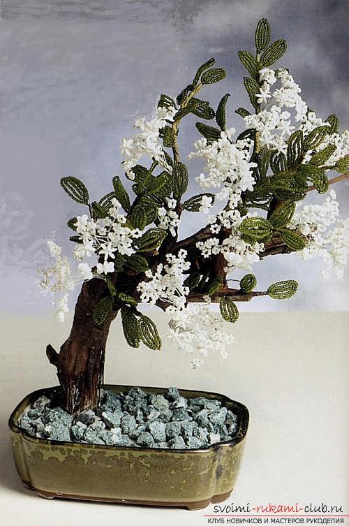 Плетение бисером фото деревья смотреть бесплатно