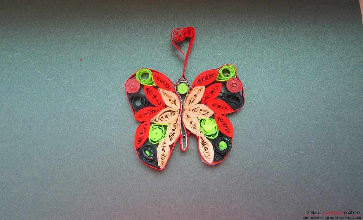 Квиллинг бабочки мастер класс с пошаговым фото
