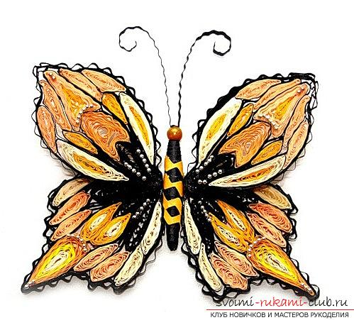 Квиллинг бабочки - петельчатый