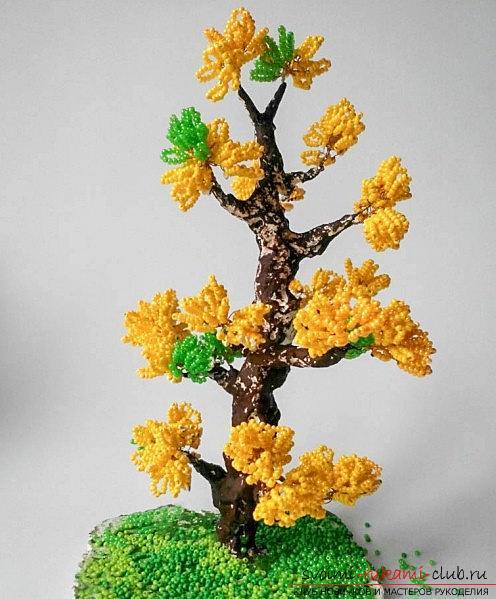 Как сделать дерево осенней листвы? Деревья из бисера и фото урок