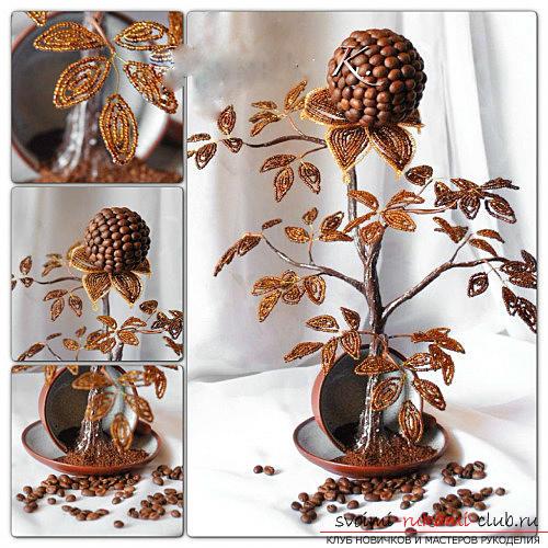 Как сделать кофейное дерево своими руками, подробные