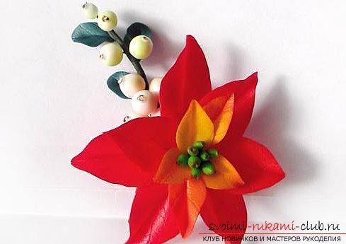 Цветок пуансеттии и ягоды снежнеягодника - урок полимерной глины и мастер-класс