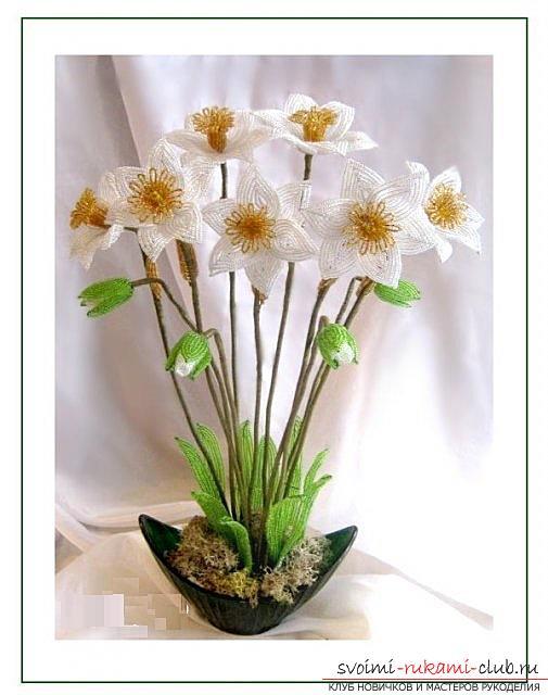 Как сплести цветок нарцисс из бисера два варианта в разных техниках плетения, схемы, фото и описание