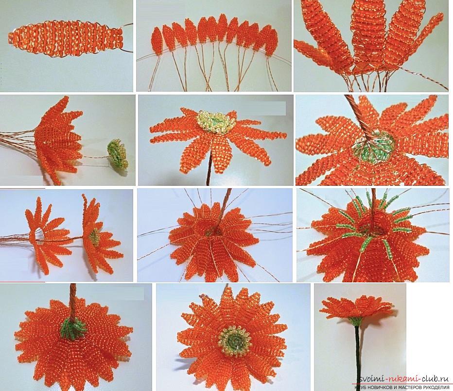 Как создать цветок герберы из