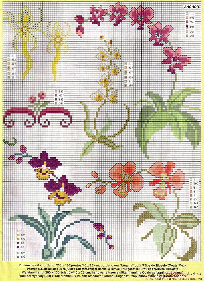 Вышиваем крестом цветы по описанию и схемам. Фото №8