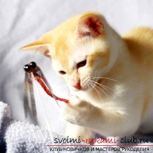 Мышка для котов своими руками