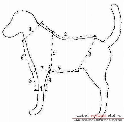 Выкройки жилетки для собаки своими руками