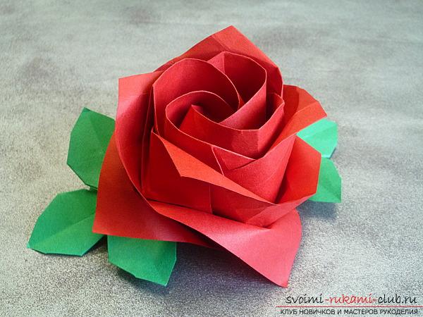 Как сделать оригами розу фото