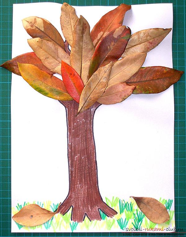 Поделки дерева своими руками детей фото