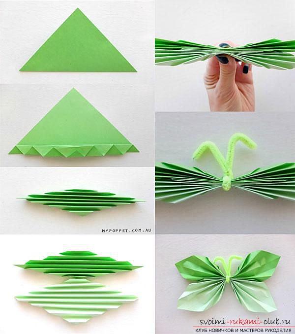Как сделать бабочку из бумаги своими руками для стены