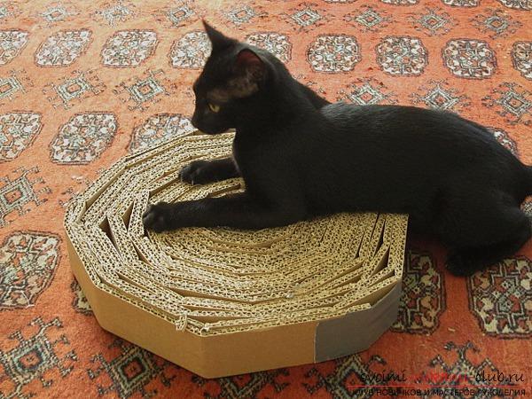 Домашняя игрушка для котенка своими руками