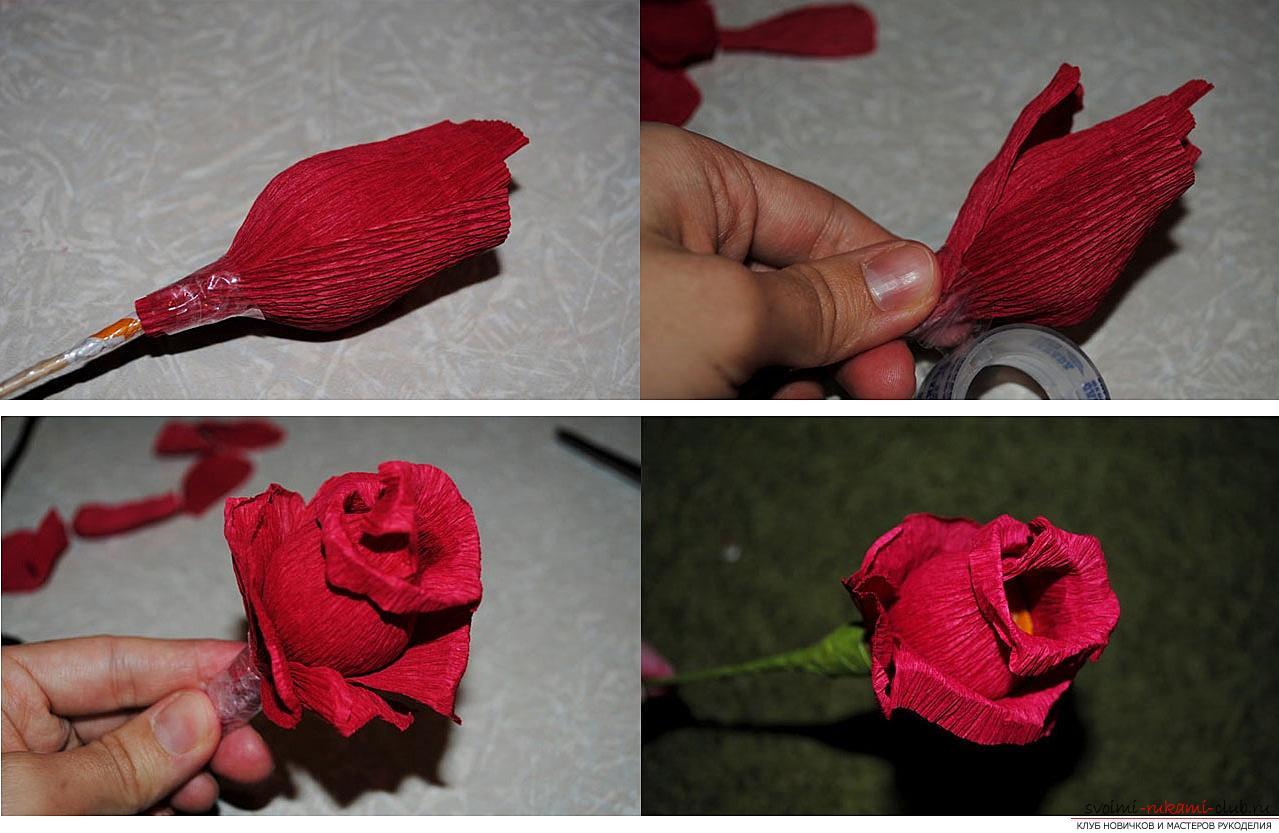 Как сделать конфетный букет из роз, пошаговые фото и инструкция создания роз из гофрированной бумаги с сердцевинками из конфет. Фото №8