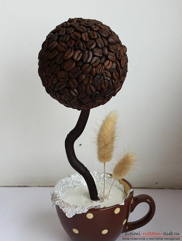 Как сделать топиарий из кофейных зерен своими руками, пошаговые фото, подробная инструкция, советы и рекомендации по созданию кофейных деревьев различной формы. Фото №16