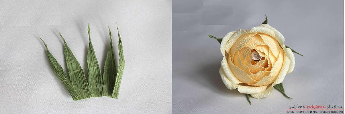 Как сделать конфетный букет из роз, пошаговые фото и инструкция создания роз из гофрированной бумаги с сердцевинками из конфет. Фото №17