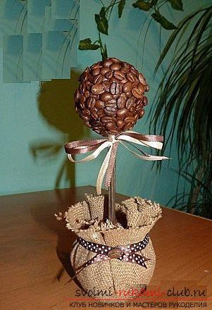 Как сделать топиарий из кофейных зерен своими руками, пошаговые фото, подробная инструкция, советы и рекомендации по созданию кофейных деревьев различной формы. Фото №1