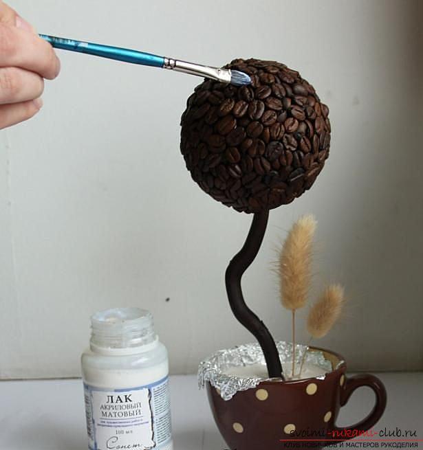 Как сделать топиарий из кофейных зерен своими руками, пошаговые фото, подробная инструкция, советы и рекомендации по созданию кофейных деревьев различной формы. Фото №17