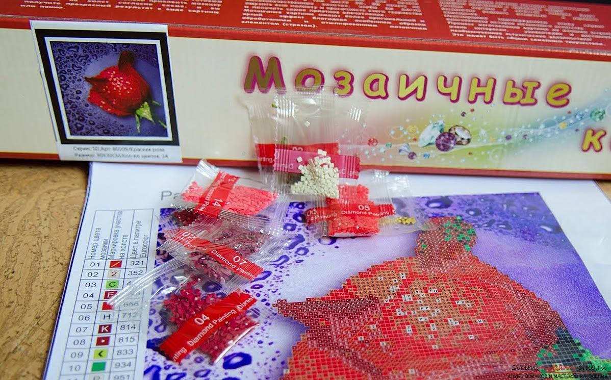 Подробный мастер-классов по алмазной вышивке с пошаговым описанием и фото.. Фото №2