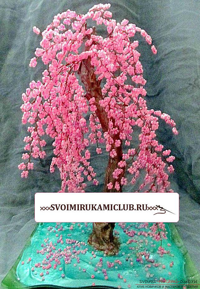 Деревья из бисера или как сделать сакуру - пособие для начинающих в бисероплетении