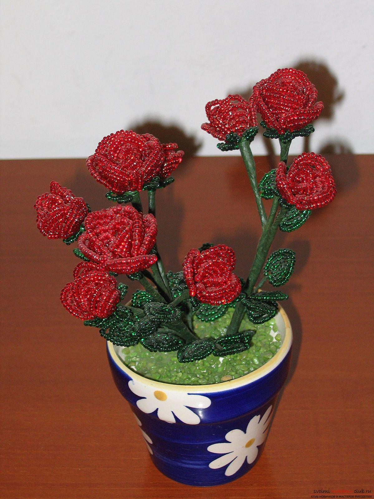 роза из бисера схема плетения с фото