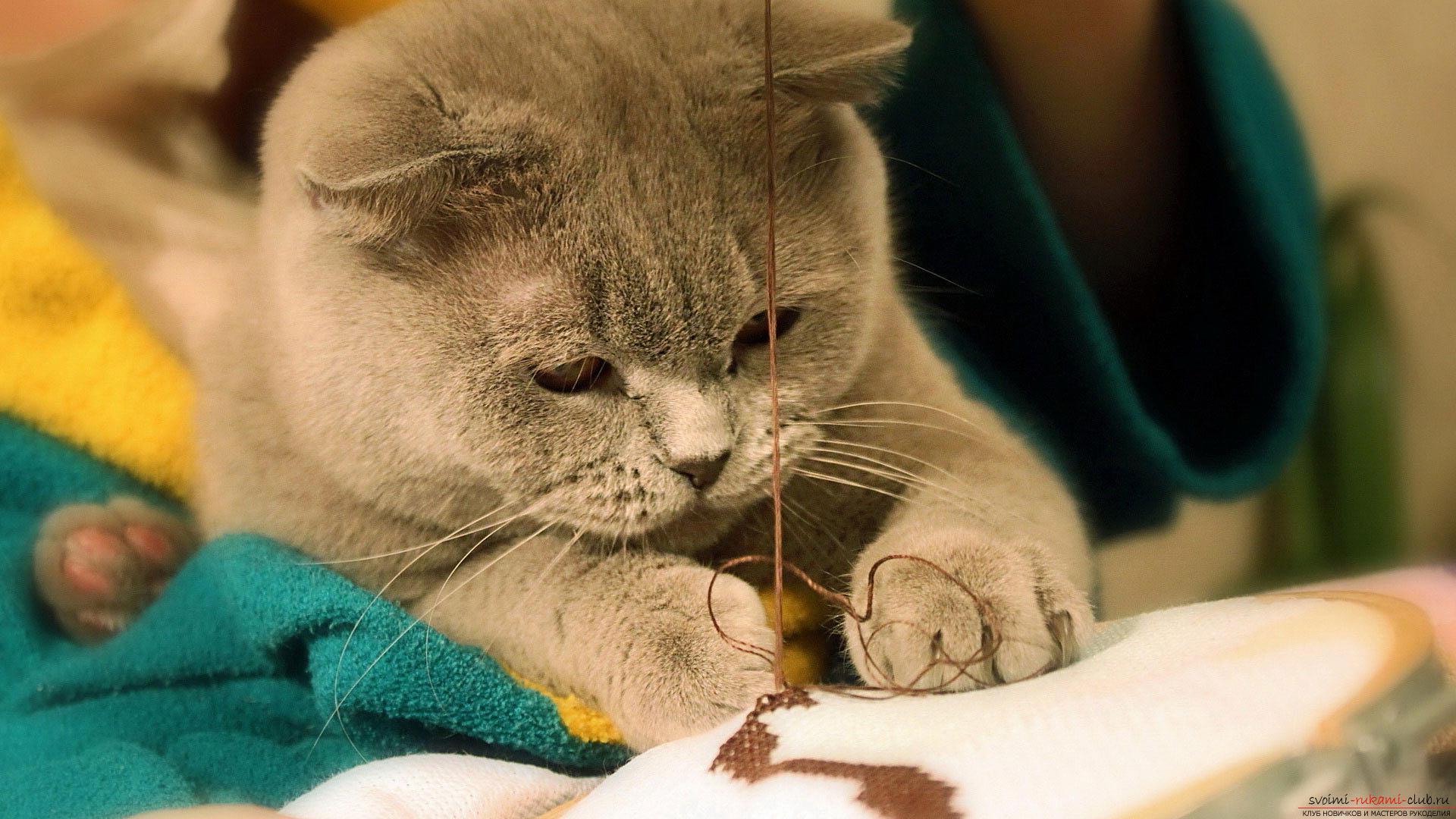 Уроки вышивки крестом для начинающих бесплатно, схемы вышивки крестом, бесплатные схемы вышивки