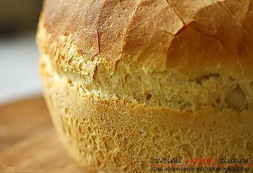 Как сделать хлеб. Фото №1