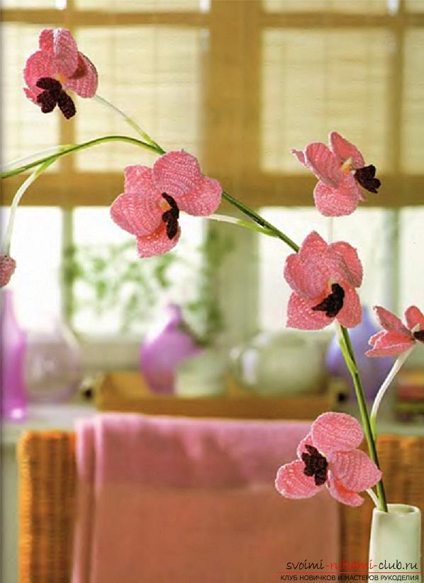 Как связать объемную орхидею, нарцисс, фиалку и тюльпан крючком, схемы и описание.. Фото №3