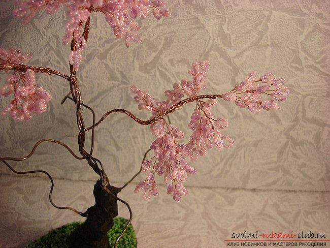 Как сплести сакуру из бисера, подробные мастер классы с пошаговыми фото и описанием.. Фото №21