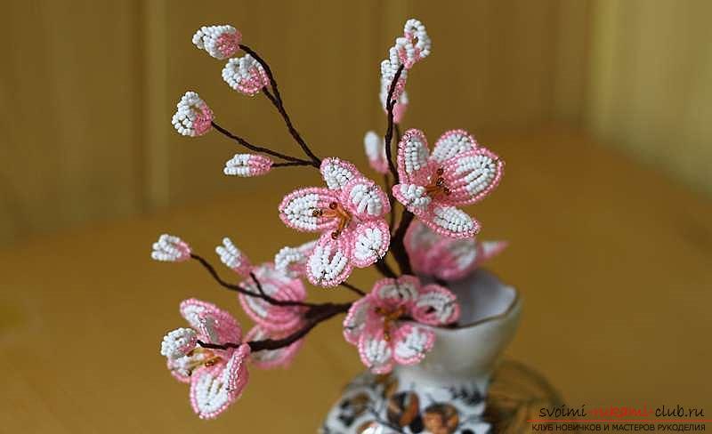 Как сплести сакуру из бисера, подробные мастер классы с пошаговыми фото и описанием.. Фото №33