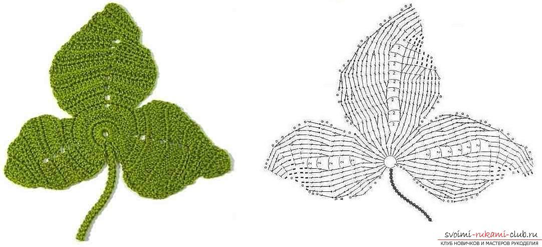 Схемы и подробное описание как связать крючком листья разных форматов.. Фото №8