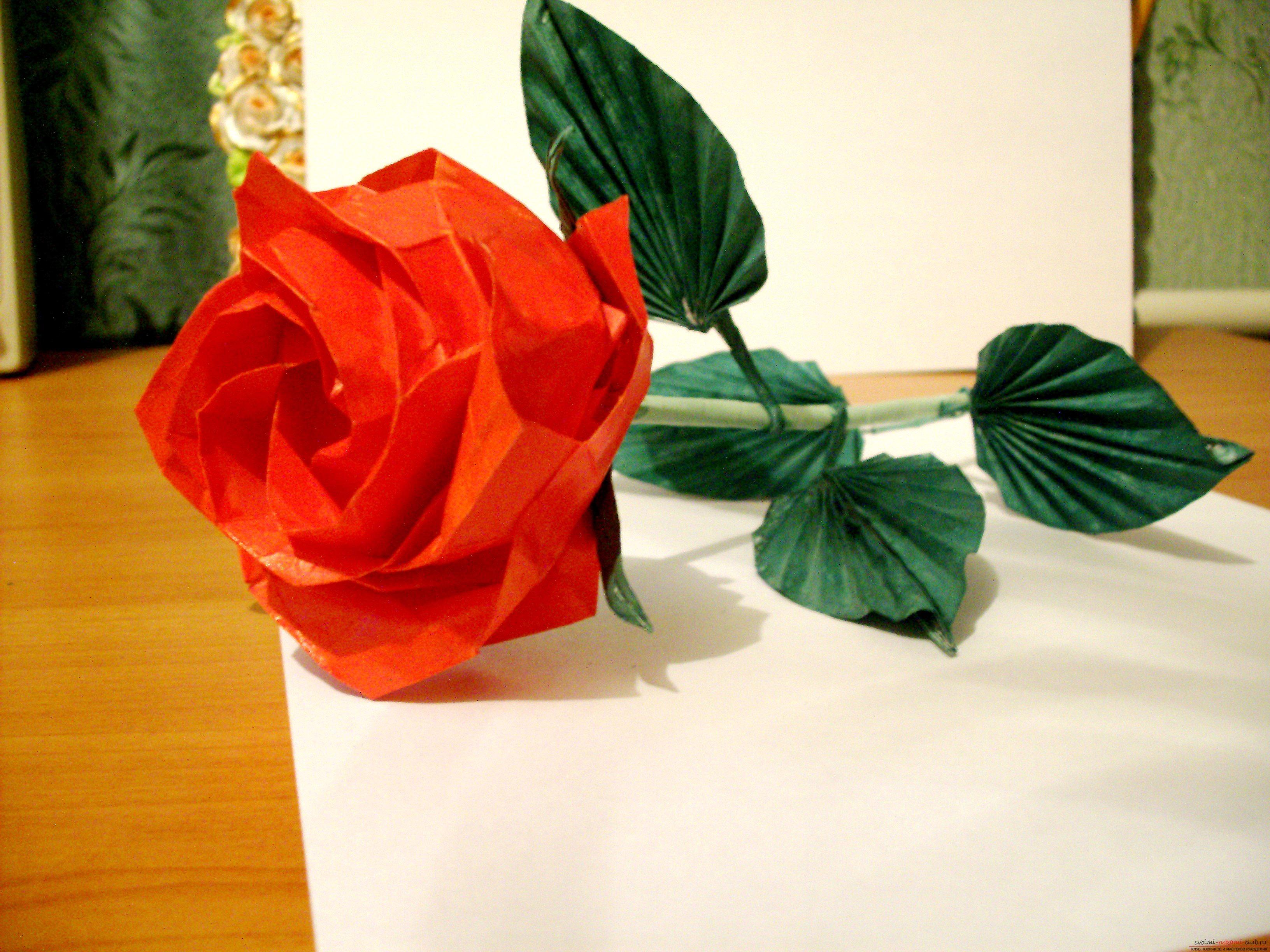 Советы для создания оригами-розы своими руками. Фотографии для работы.. Фото №1