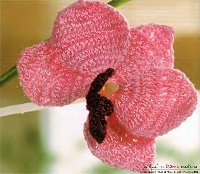 Как связать объемную орхидею,